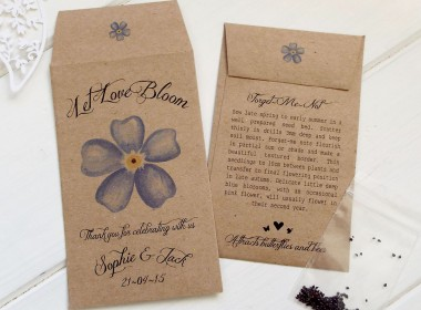 forget-me-not flower brown