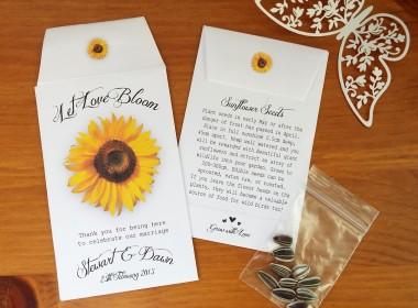 sunflower white